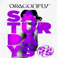 Dragonfly Nightclub ~ Saturdays