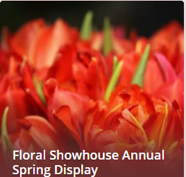 Wyndham Garden Niagara Falls Fallsview - Fallsview Hotel - Upcoming Events - FLORAL SHOWHOUSE ANNUAL SPRING DISPLAY