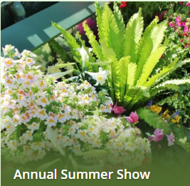 Days Inn Niagara Falls Lundy's Lane - Fallsview Hotel - Upcoming Events - Annual Summer Show